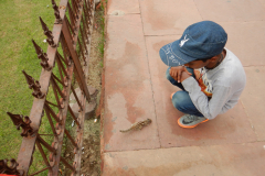 Agra Fort - Squirrel seems to like him