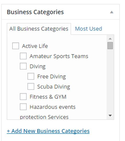 Screenshot of the current business category section – to be modified