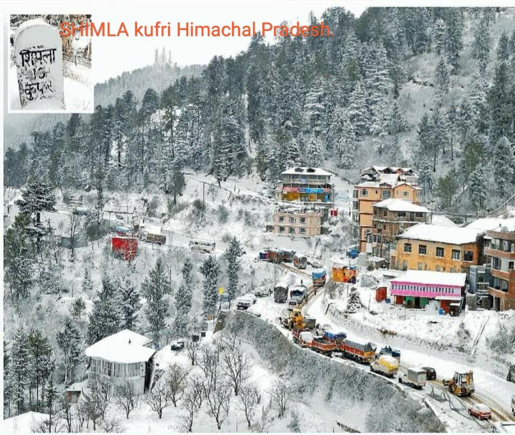 Kufri, Shimla - Himachal Pradesh